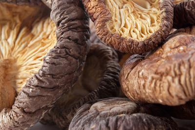 mushrooms-shitake